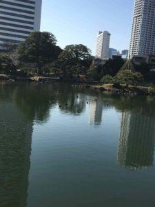 芝離宮庭園と池とビル