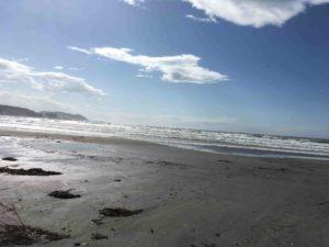 風が強い初春の由比ヶ浜の波打ち際写真